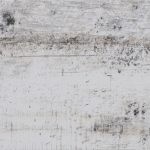 celtis dust 600x175x8 3