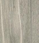 giornata grigio 600x110 4
