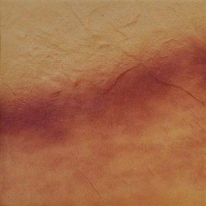klinker krilco jesienny lisc rustiko 300x300